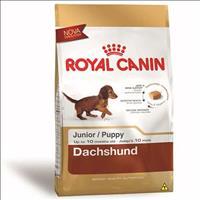 Ração Royal Canin Mini para Cães Filhotes da Raça Dachshund - 3 Kg