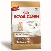 Ração Royal Canin Junior para Cães Filhoes da Raça Labrador Retriever - 12 Kg