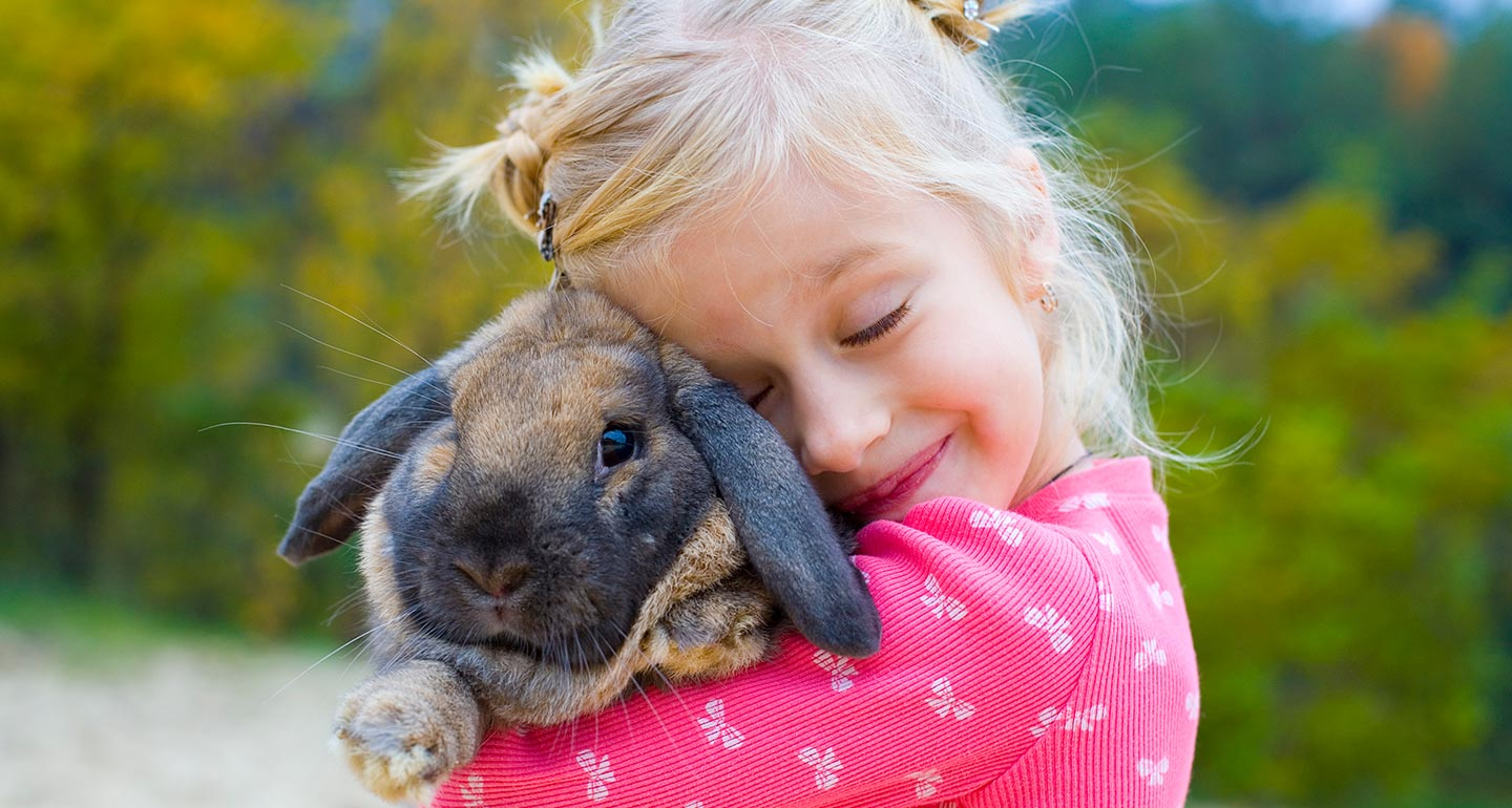 Best Small Animal Pets For Children
