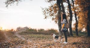 dog-friendly destinations for fall