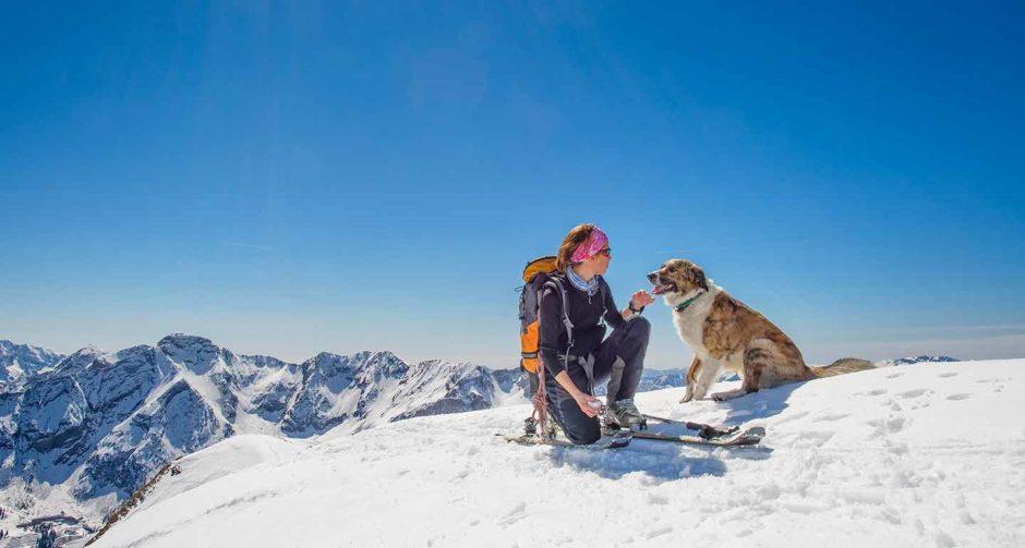 dog friendly ski resorts