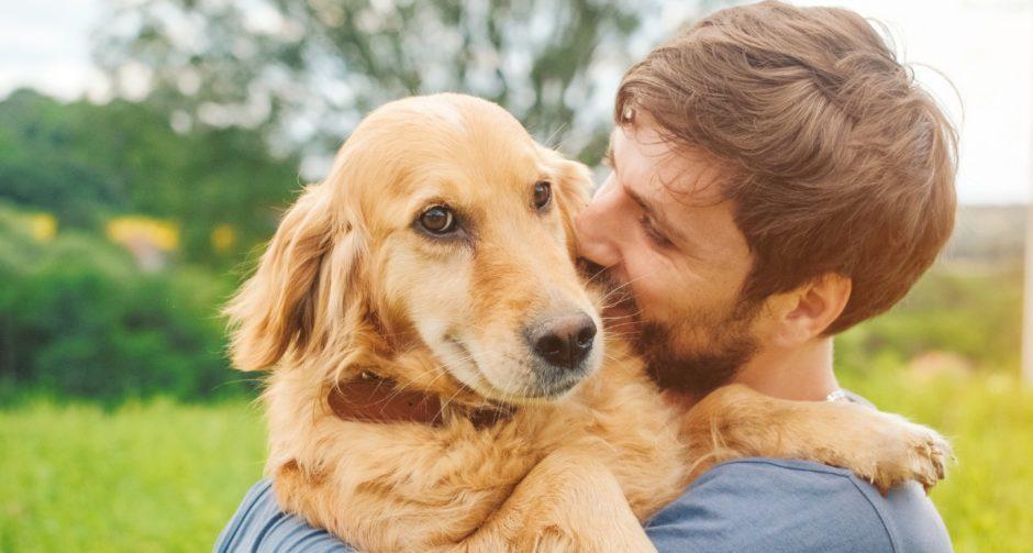 rut with dog HERO