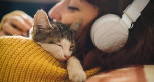 21 Reasons Kittens Are The Best Companions