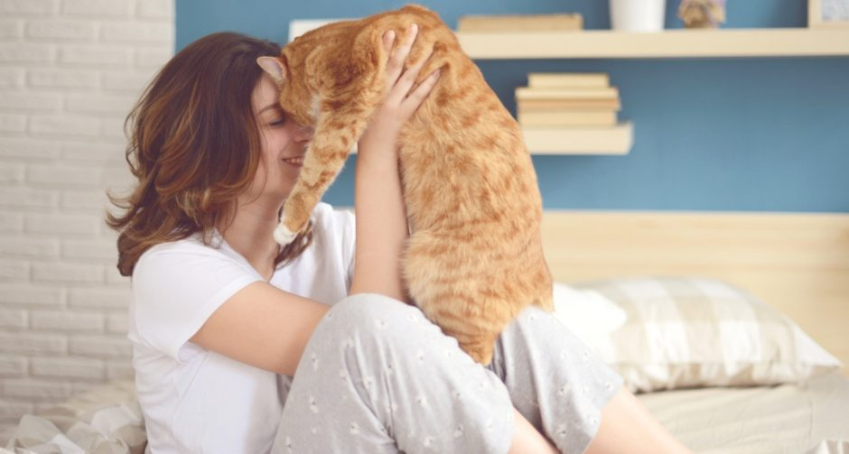 Ways to Enjoy a Sick Day with Your Cat