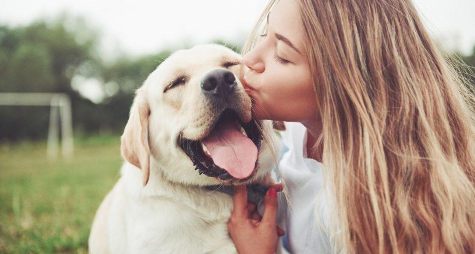 7 Ways to Bond with a Shy Dog