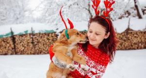 christmas with pets