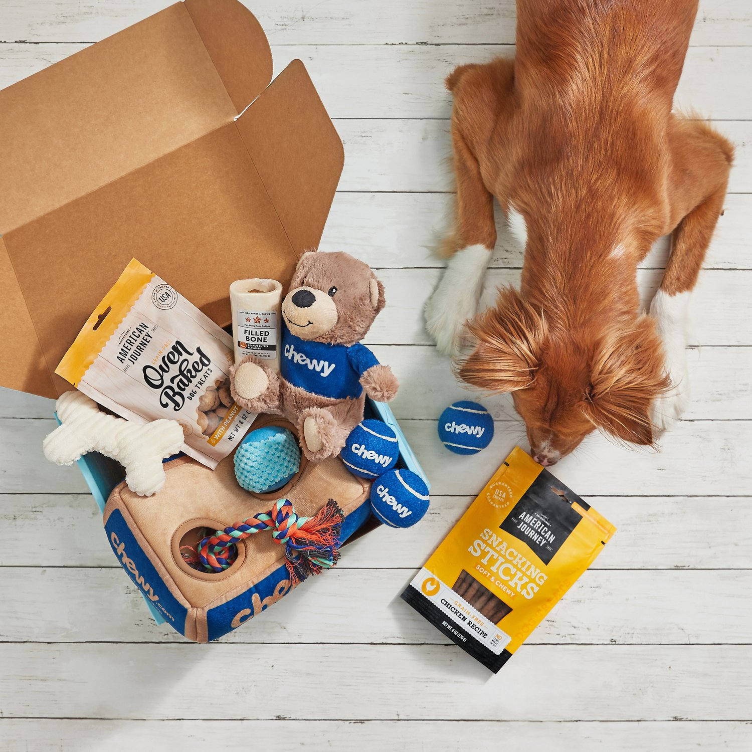 Together Fur-Ever Goody Box for Dogs