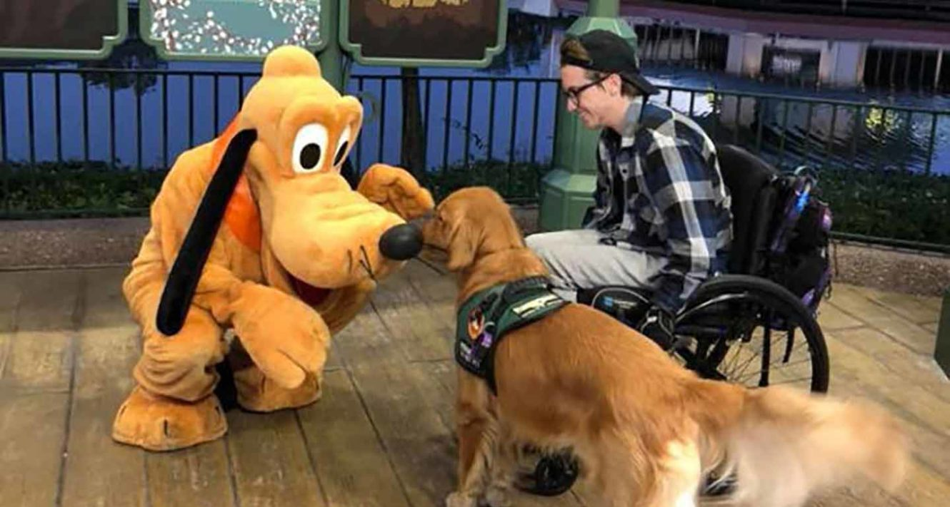 dogs at Disney