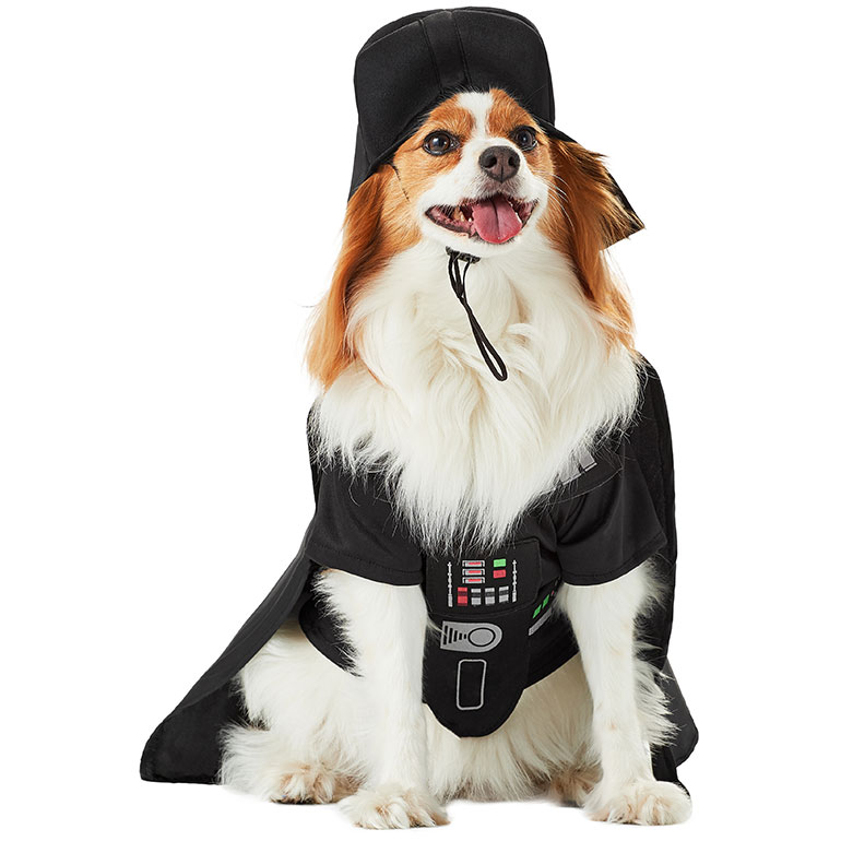 human and dog matching costumes - darth vader