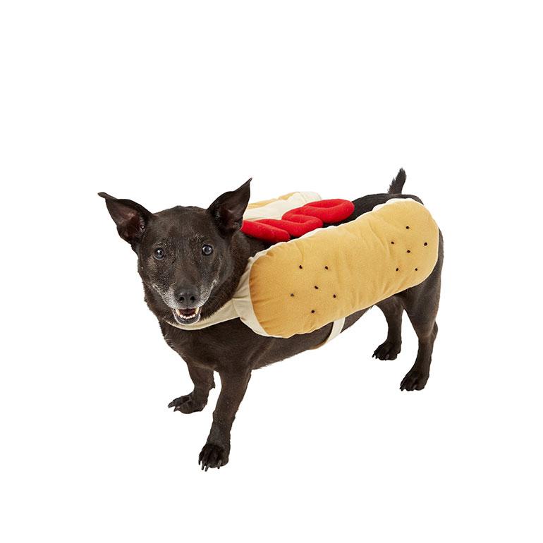 large dog costume - hotdog