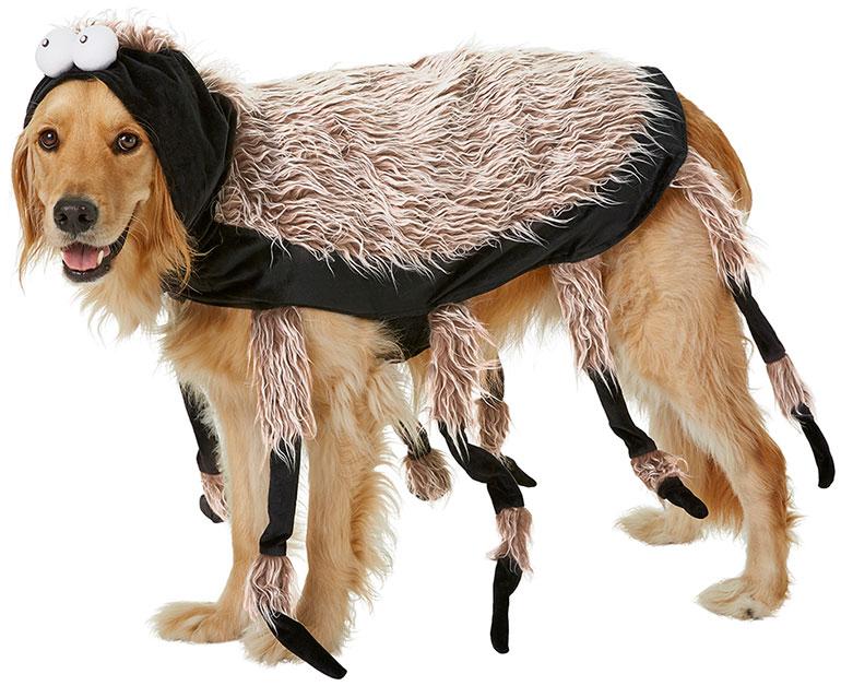 large dog costume - spider
