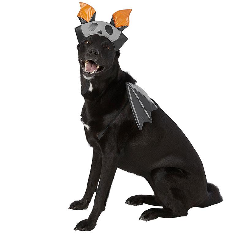 large dog costume - bat dog