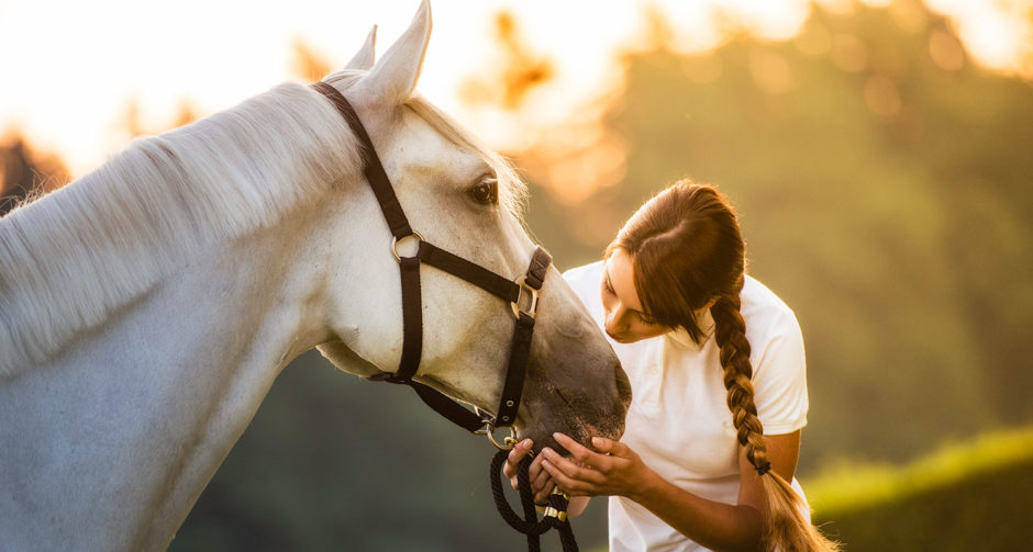 Horse gifts for horse lovers
