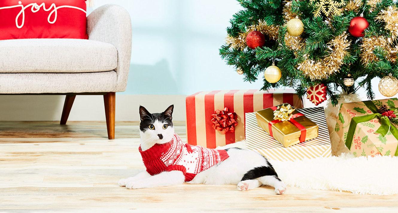 CHRISTMAS Kitty Bowl Cozy