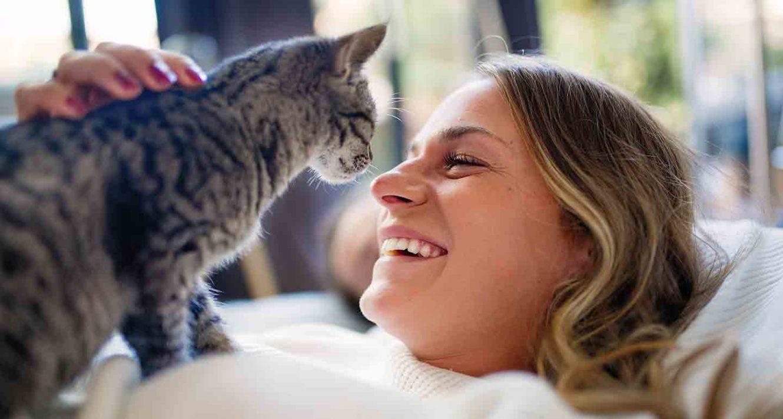 cat parent