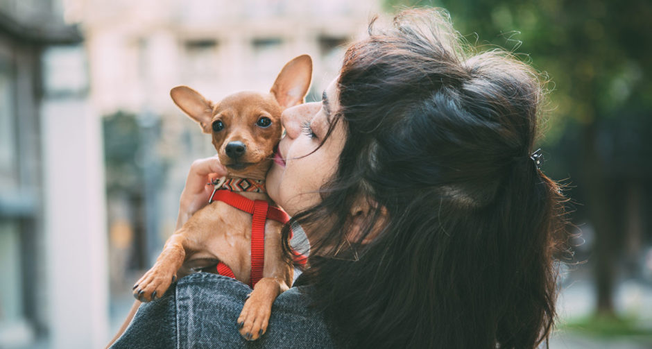 love dog names