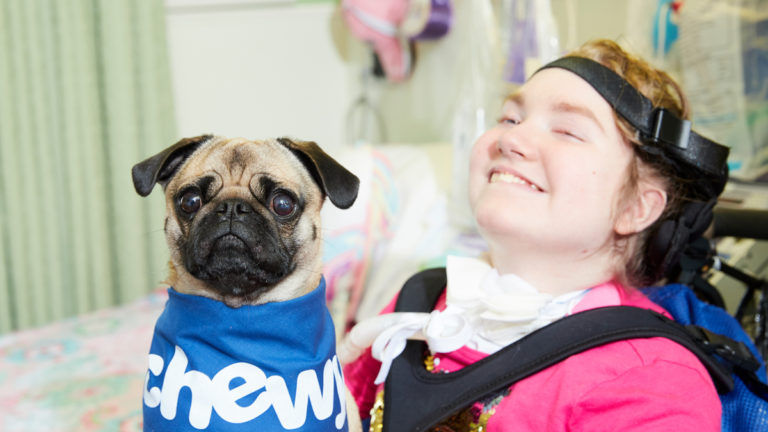 therapy dogs broward children center