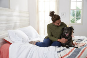 what to expect with a senior dog