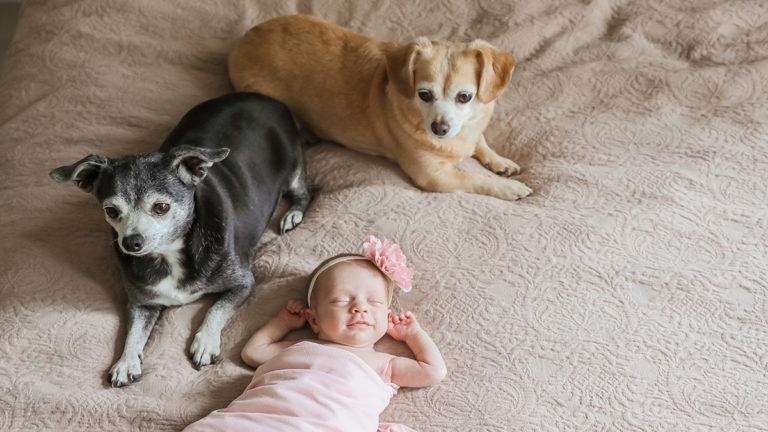 First Mother's Day: Baby V with Dogs