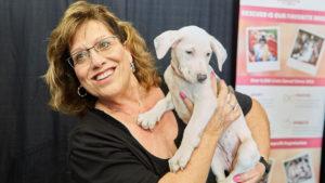pet adoption fair south florida