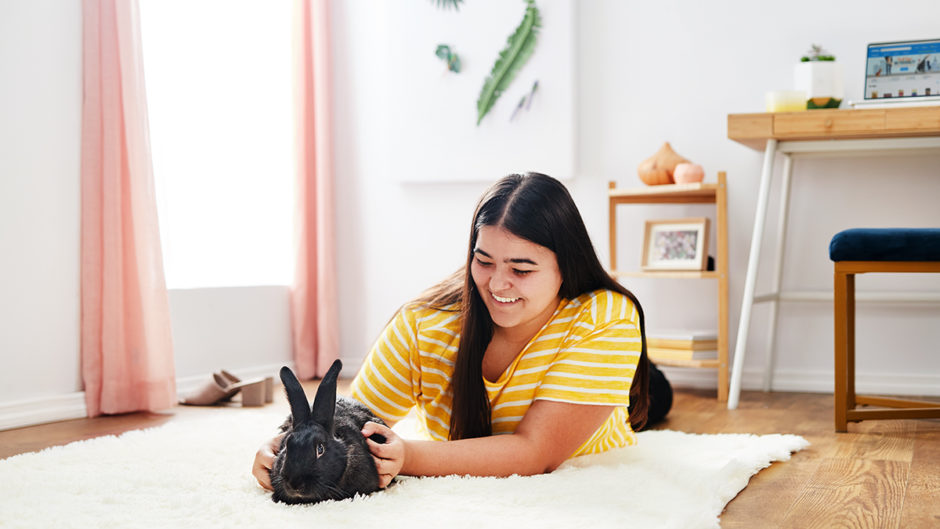 Millennials and Pet Rabbits: A Perfect Match?