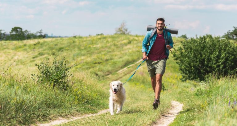 11 Essentials for Hiking with Dogs