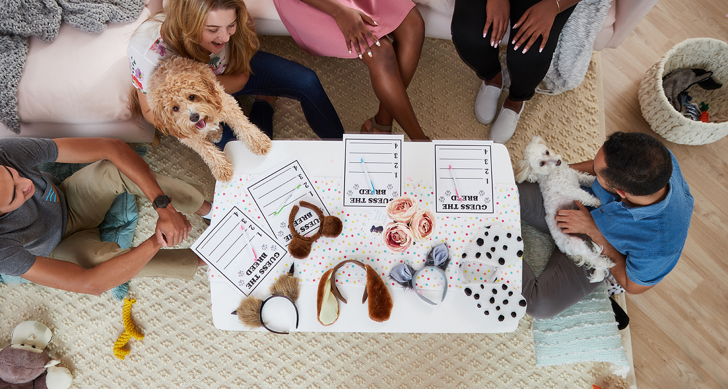 breed reveal party games