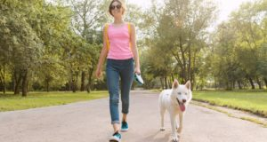 tips for walking you dog