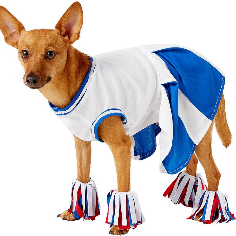 Dog halloween costume - cheerleader