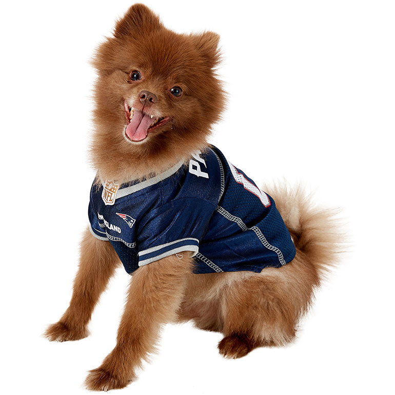 Dog Halloween costumes - NFL jersey Patriots