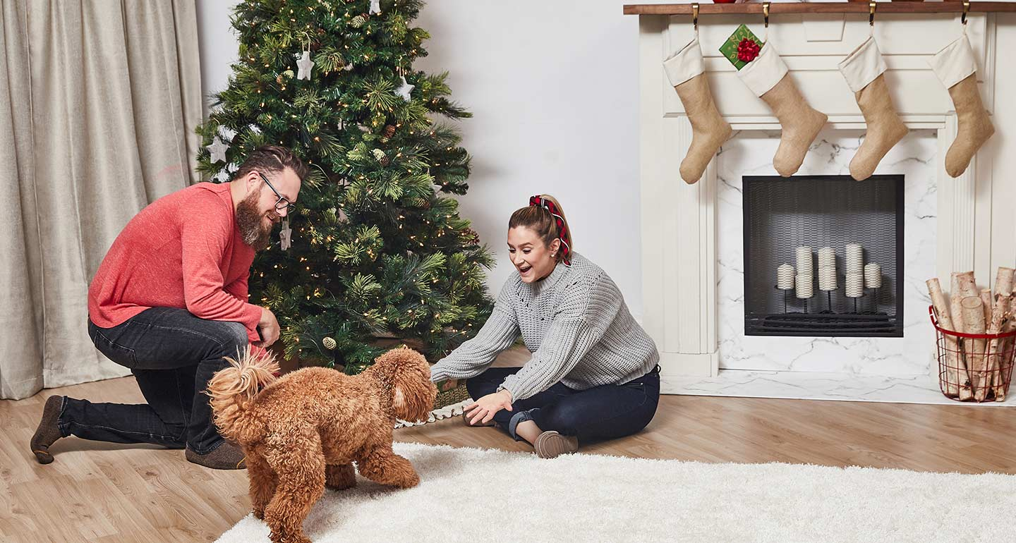 pet pictures with santa