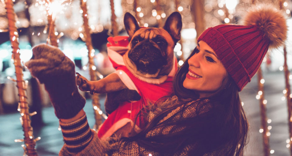 pet-friendly Christmas vacations