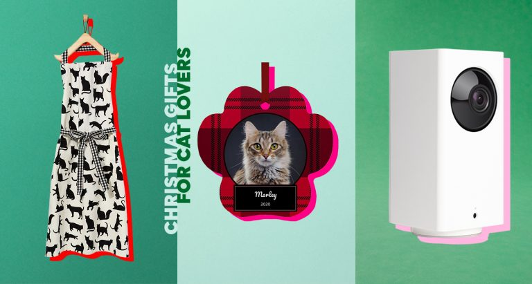 best Christmas Gifts for Cat Lovers