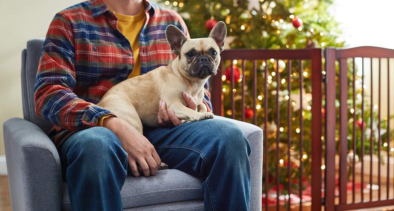 dog friendly Christmas tree