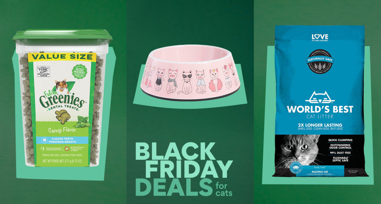 chewy black friday cat deals