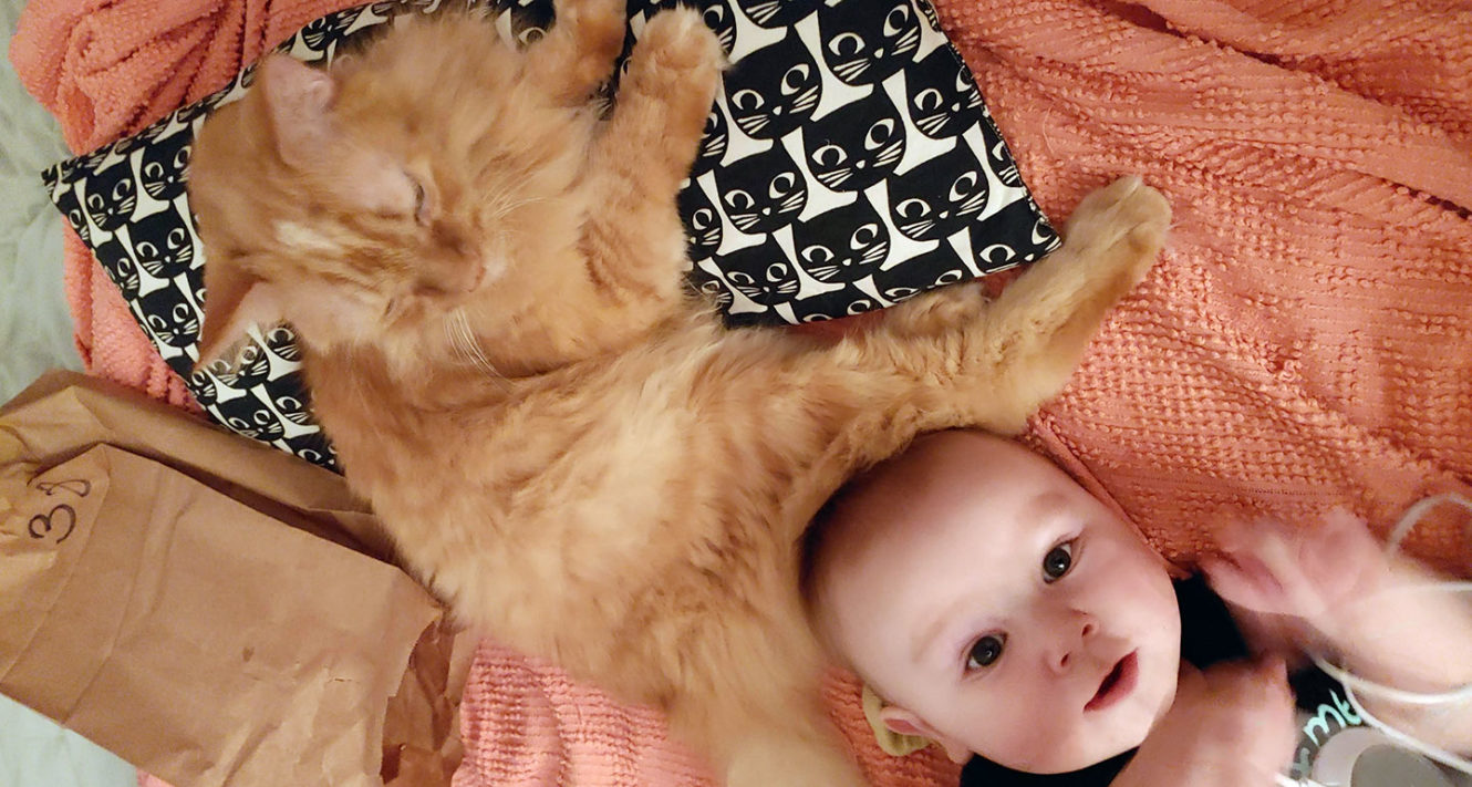 what makes a family - cat and baby
