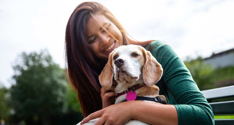 benefits of adopting a senior dog