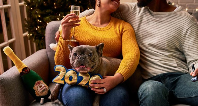 New Year's Eve With Pets