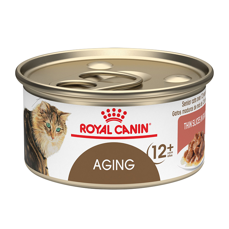 Best Senior Cat Food