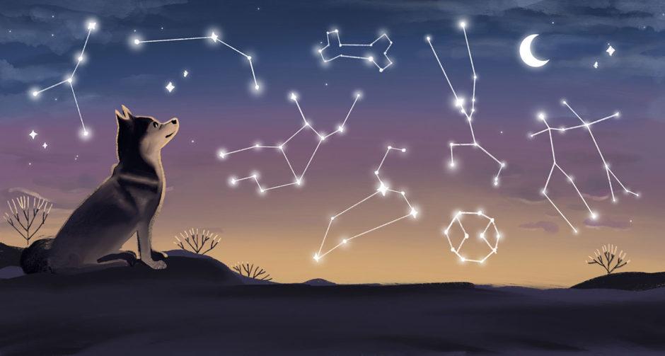 dog zodiac signs