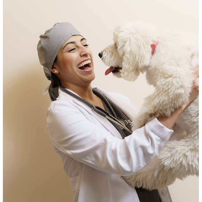 Dr Zay Satchu Is Revolutionizing Your Vet Visit Experience