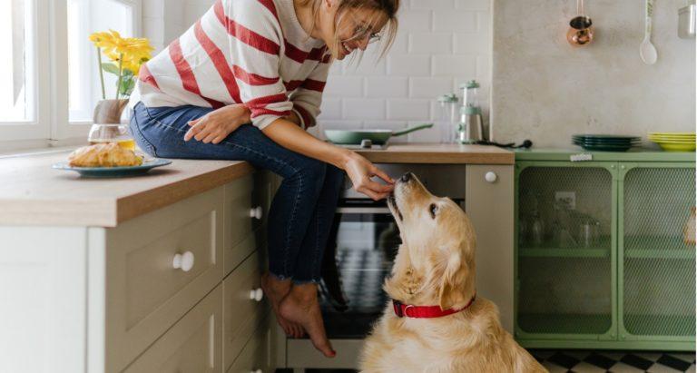 Pantry ready DIY dog treats