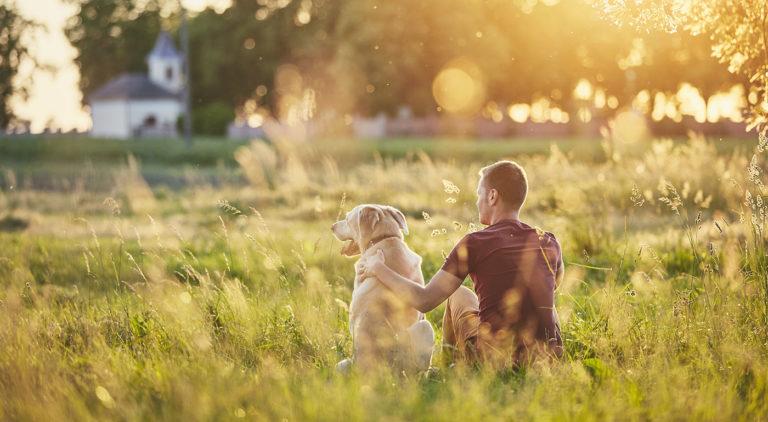 Chewy Humane Society Partnership