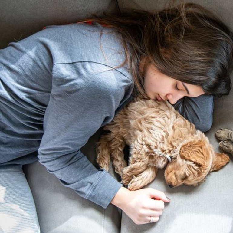 Help your pet with stress