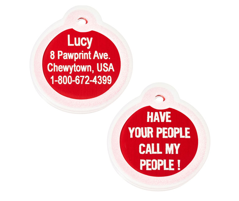 Chewy gift card - dog supplies - pet ID tags