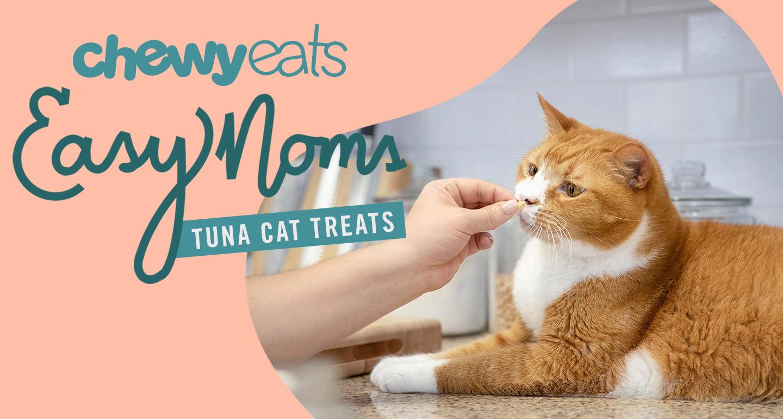 DIY cat treat