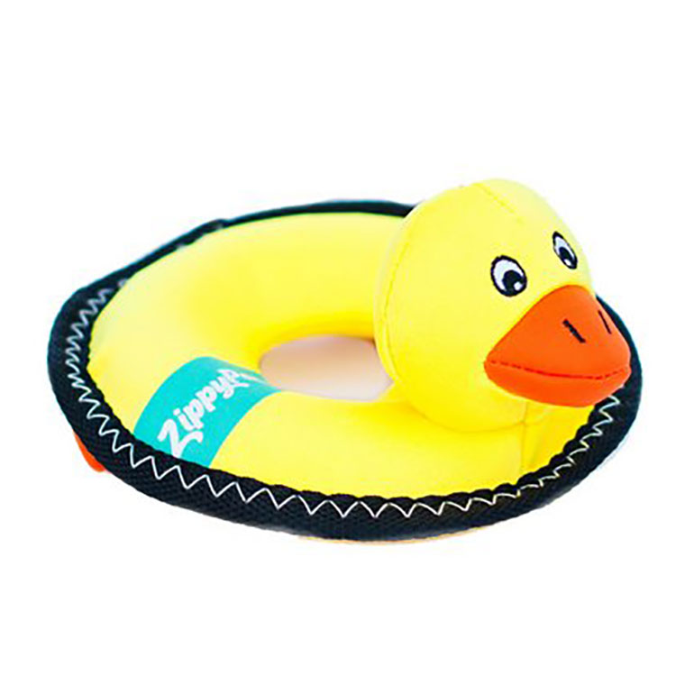 dog pool toy