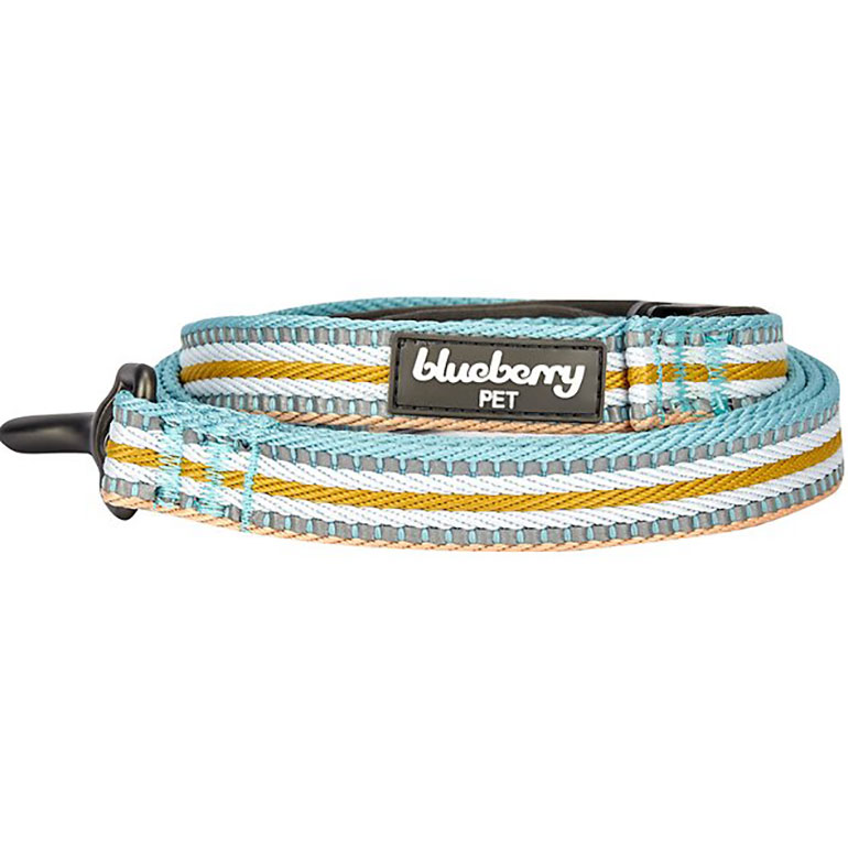 summer dog leash