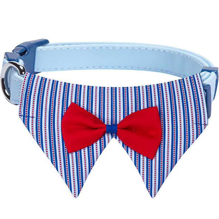 4th of July Dog Outfits - collar