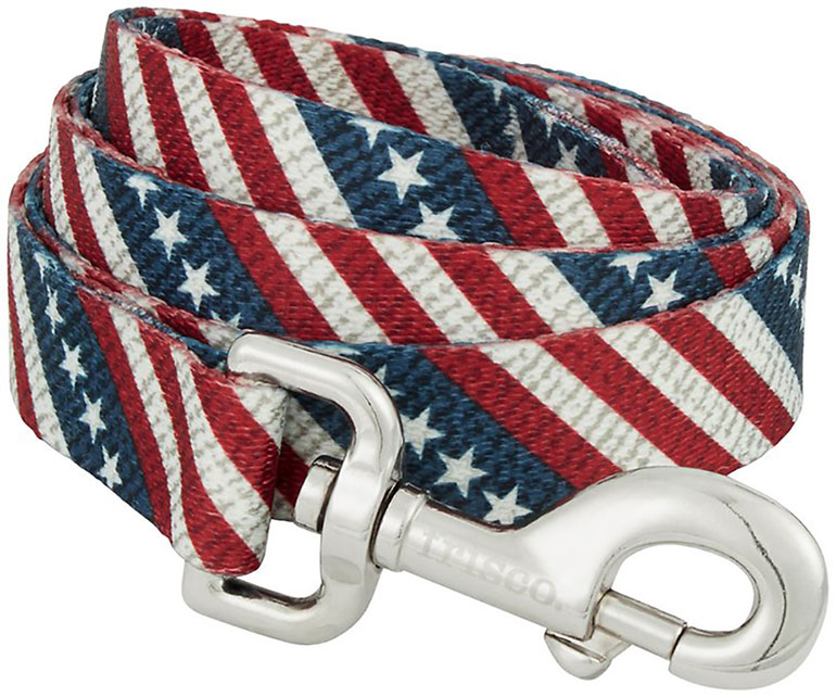4th of July Dog Outfits - leash